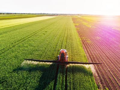 care-sunt-cele-mai-eficiente-fungicide-in-culturile-agricole
