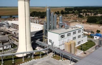 noi-furaje-prezentate-la-zimnicea-de-specialistii-biofuel-energy