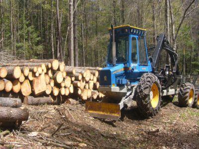 principalele-prevederi-ale-proiectului-de-lege-privind-infiintarea-garzilor-forestiere