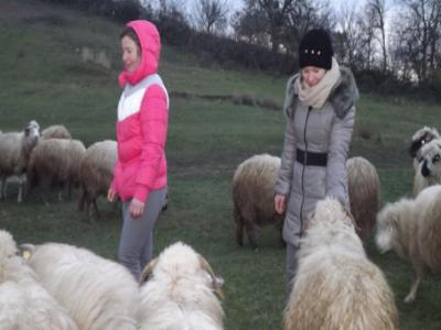 Doua surori gemene, fermieri de succes de pe bancile facultatii
