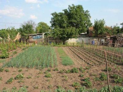 romania-detine-o-treime-din-gospodariile-agricole-existente-in-uniunea-europeana