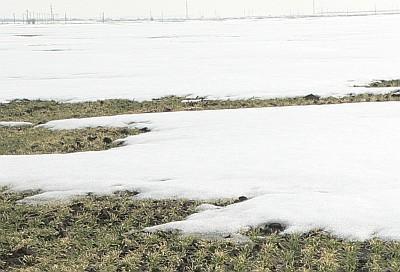 prognoza-vremii-pe-doua-saptmani-unde-va-ninge-in-prima-jumatate-a-lunii-decembrie