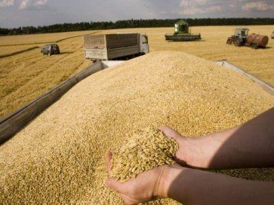egiptul-a-ajung-la-concluzia-ca-graul-cu-mac-din-romania-intruneste-conditiile-pentru-import