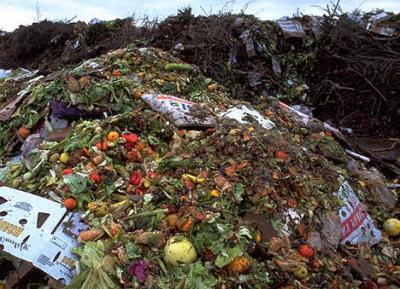 pana-in-2-miliarde-de-tone-de-alimente-sunt-aruncate-in-fiecare-an
