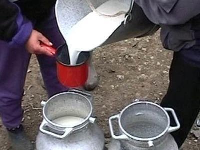 ansvsa-a-incheiat-campania-privind-igiena-laptelui