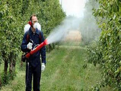 recomandari-pentru-utilizarea-eficienta-a-fungicidelor-in-culturile-agricole