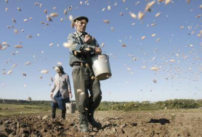 un-raport-bcr-arata-imbatranirea-populatiei-active-din-agricultura