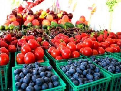 importurile-de-fructe-si-legume-mai-scumpe-favorizate-de-lipsa-echipamentelor-necesare-fermierilor-autohtoni