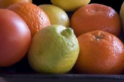 copa-cogeca-incearca-stoparea-importurilor-de-citrice-din-africa-de-sud