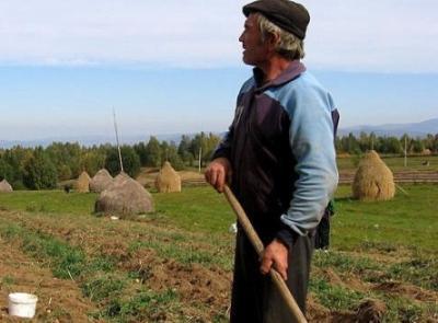 mai-mult-de-jumatate-dintre-micii-fermieri-vor-sa-isi-vanda-pamantul-sau-sa-il-dea-in-arenda