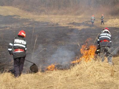 incendiile-de-vegetatii-fac-ravagii-in-tara-apia-va-lua-masuri-impotriva-proprietarilor-care-ard-miristea