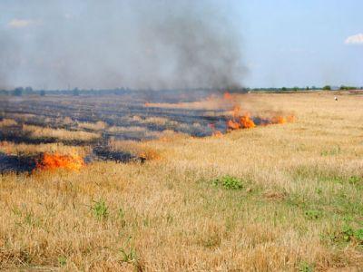 incendierea-suprafetelor-agricole-poate-atrage-pierderea-subventiei