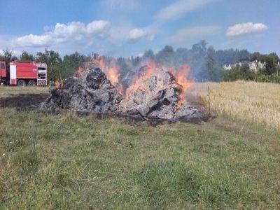 ce-obligatii-au-fermierii-care-vor-sa-faca-lucrari-de-igienizare-prin-arderea-resturilor-vegetale