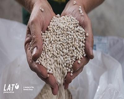 topul-ingrasamintelor-folosite-de-fermieri-in-judetele-moldovei
