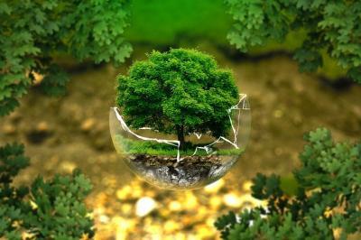 inregistrarea-in-agricultura-ecologica