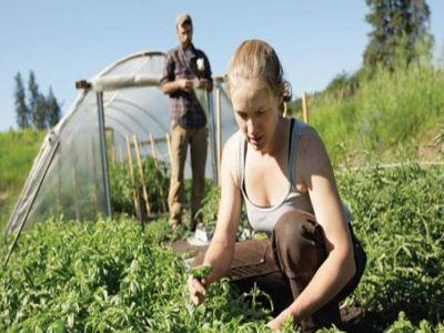 care-sunt-etapele-instalarii-tinerilor-fermieri