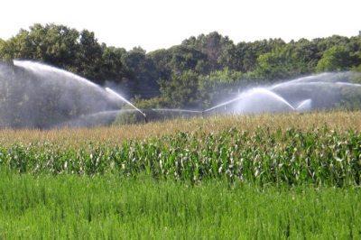 ministerul-agriculturii-vrea-inca-800000-de-hectare-irigate