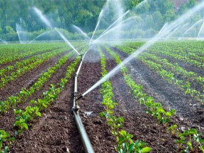 fermierii-pot-depune-proiectele-pentru-finantarea-dezvoltarii-sistemelor-de-irigatii