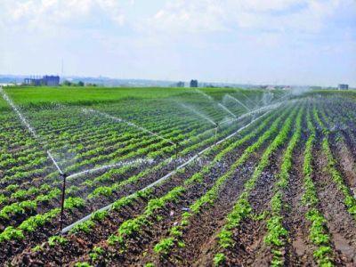suprafata-agricola-care-poate-fi-irigata-in-romania-depasi-18-milioane-de-hectare