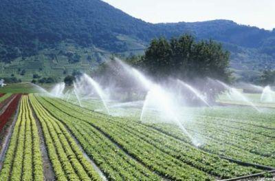pro-agro-a-negociat-scaderea-tarifului-la-irigatii