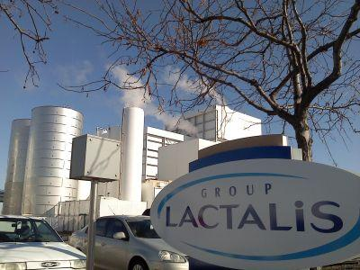 grupul-lactalis-a-primit-unda-verde-pentru-achizitionarea-covalact-sa-si-lactate-harghita-sa