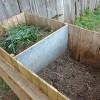 Compostul, îngrăşământul organic din grădina