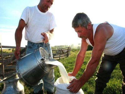 apia-anunta-un-buget-majorat-pentru-producatorii-de-lapte