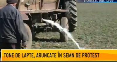 protest-al-producatorilor-de-lapte-acestia-cer-demisia-ministrului-agriculturii