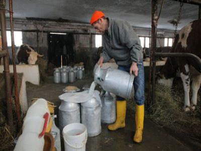 producatorii-de-lapte-asteptati-la-apia-sa-isi-depuna-cererile-pentru-ajutorul-exceptional