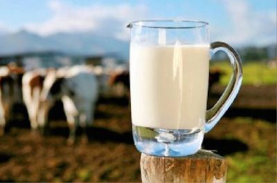 madr-producatorii-vor-primi-ajutoare-pentru-reducerea-livrarilor-de-lapte
