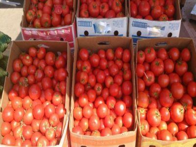 prima-recolta-de-rosii-romanesti-a-ajuns-in-piete-si-hypermarketuri