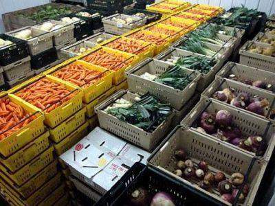 importurile-de-legume-si-fructe-ale-romaniei-de-sase-ori-mai-mari-decat-exporturile