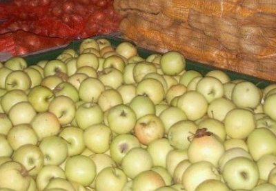 patronul-yuksek-international-fruct-arestat-pentru-29-de-zile