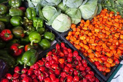 top-5-idei-de-afaceri-in-legumicultura