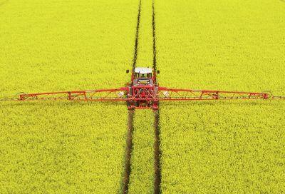 calendarul-fermierului-in-luna-mai