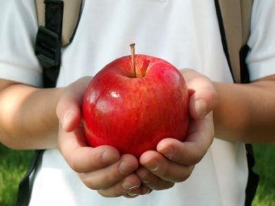 programul-de-distribuire-a-fructelor-proaspete-in-unitatile-de-invatamant-extins-si-la-nivelul-gradinitelor