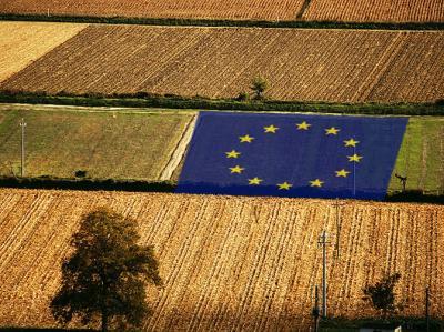 masuri-noi-de-sprijin-pentru-sectorul-agroalimentar-anuntate-de-ue