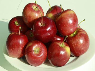 guvernul-aloca-45-de-milioane-de-lei-pentru-incurajarea-consumului-de-fructe-in-scoli