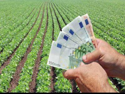 a-fost-majorat-cuantumul-ajutoarelor-de-minimis-in-sectorul-agricol