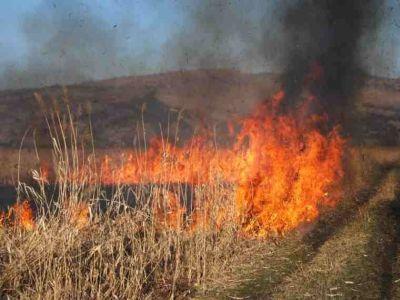 ce-risca-fermierii-care-nu-respecta-normele-de-ecoconditionalitate