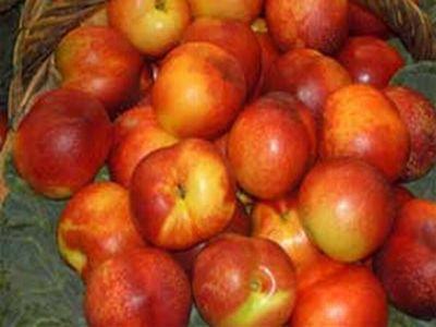 dacian-ciolos-comisia-europeana-va-lua-masuri-urgente-pentru-a-sustine-sectorul-piersicilor-si-nectarinelor