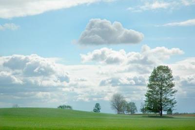 ce-inseamna-de-fapt-ploaia-artificala-si-cat-de-eficienta-este-in-agricultura