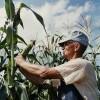 Preocupari pentru instruirea specialistilor in agricultura ecologica