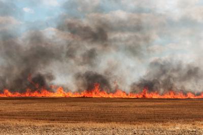 madr-ordinul-privind-stingerea-incendiilor-agricole-abrogat