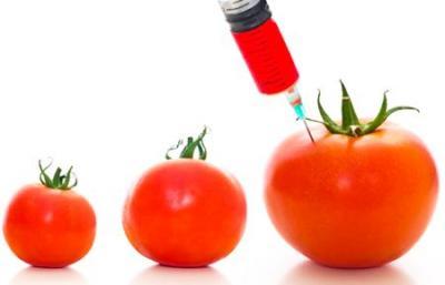 stelian-fuia-este-de-acord-cuue-in-privinta-culturilor-de-organisme-modificate-genetic