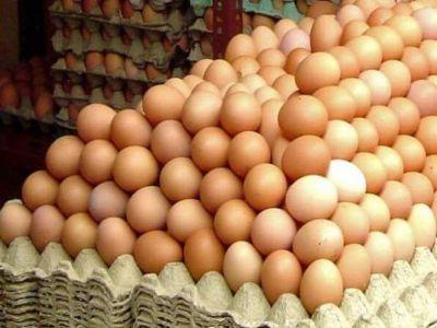 crescatorii-de-pasari-estimeaza-ca-vor-vinde-intre-170-si-180-de-milioane-de-oua-in-perioada-pastelui