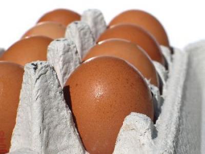 avicola-mihailesti-vrea-sa-intensifice-exporturile-de-oua-in-2013