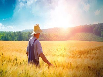 agricultura-si-omul-modern
