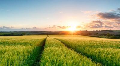 ministrul-agriculturii-va-oferi-teren-de-la-ads-tinerilor-fermieri