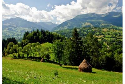 alexe-mediu-padurile-din-parcurile-nationale-protejate-cu-strictete